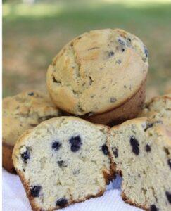 muffins arandanos paleo